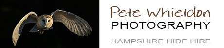 Pete Whieldon Photography